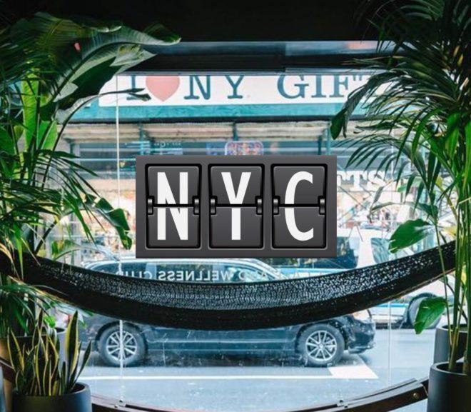 NYC_NapYork_MinhaSalaVIP